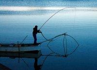 シロウオ漁
